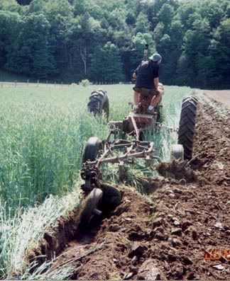 Plowing Photo